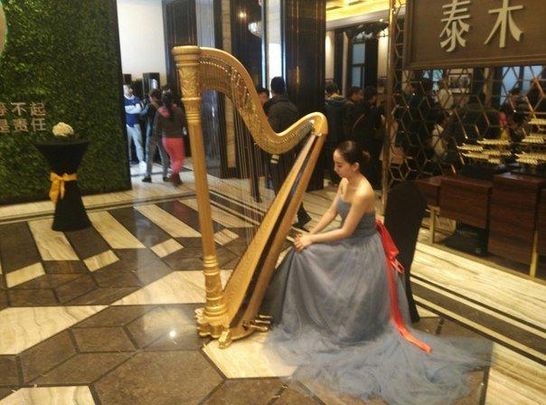 арфа в китае