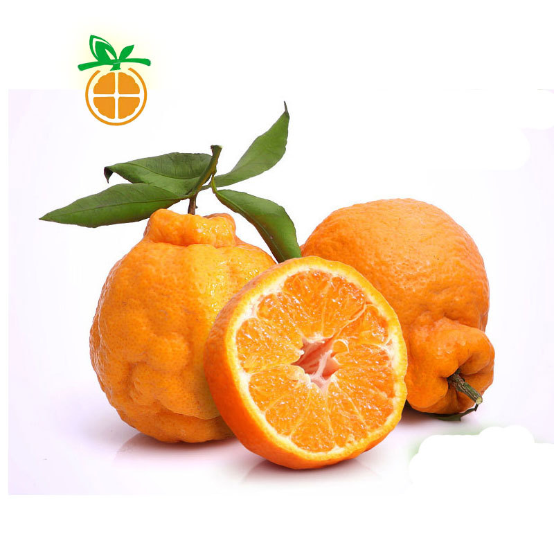 уродливый мандарин